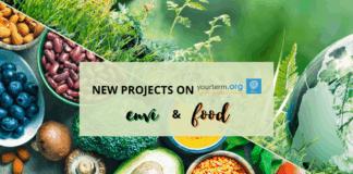 YourTerm Food&Envi feature