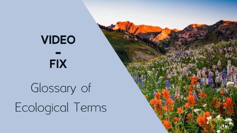 Video-Fix: Glossary of Ecological Terms