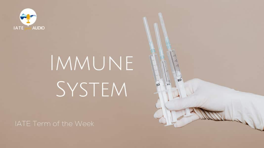 IATE Term of the Week Immune System with Audio